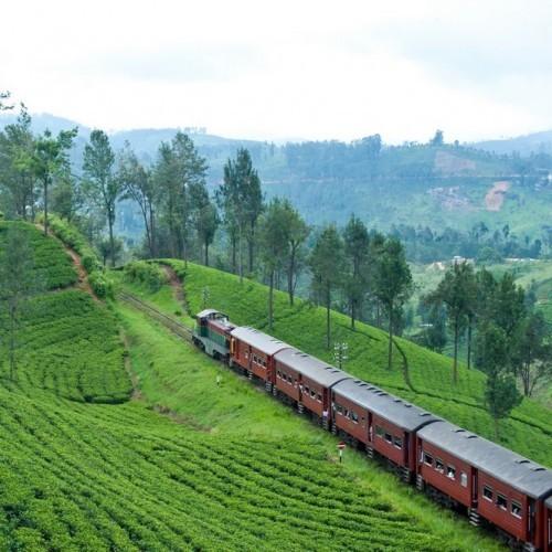Scenic train journey to Ella in the southern Hill Country, Sri Lanka