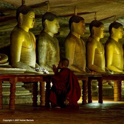 Praying monk, Dambulla cave temples, Sri Lanka
