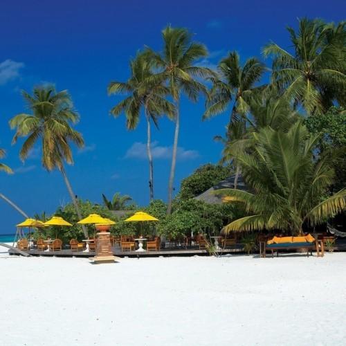 Beach and palms, Angsana Ihuru, Maldives